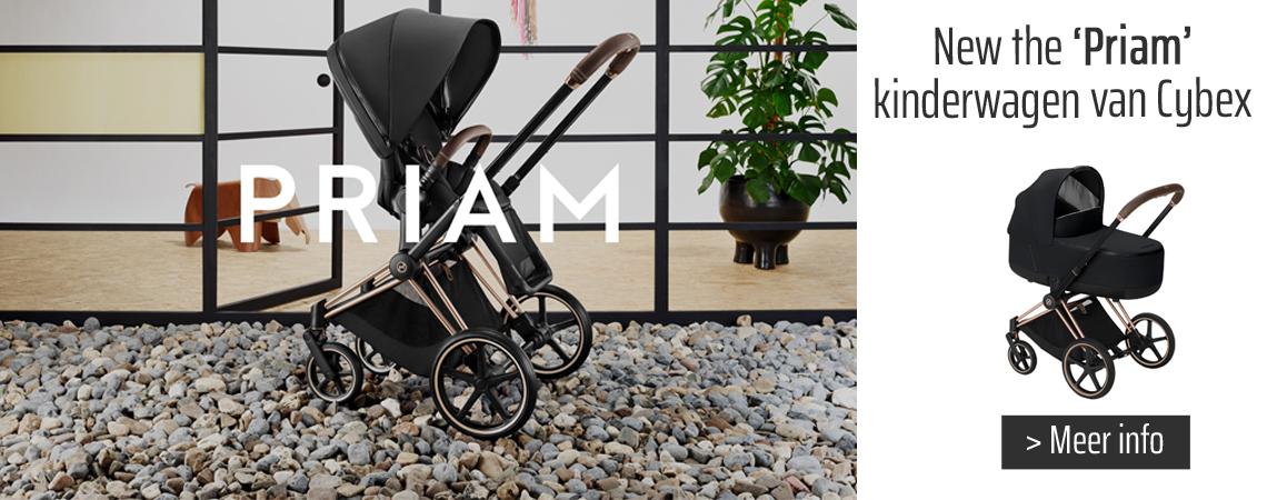 Kinderwagen Priam Cybex